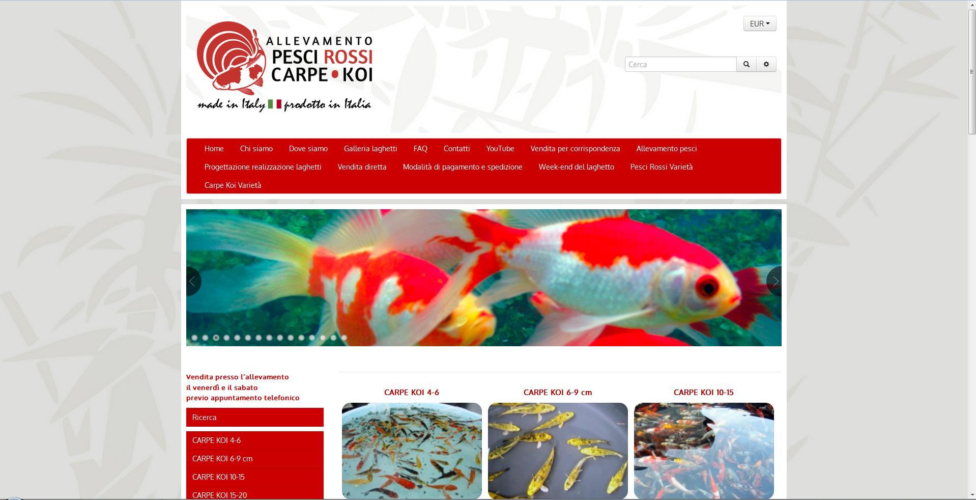allevamento pesci rossi carpe koi